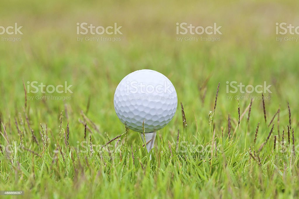 Golf ball on tee over a blurred green stock photo