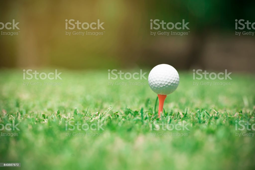 Golf ball on tee ready to be shot.Golf ball in green grass golf club...