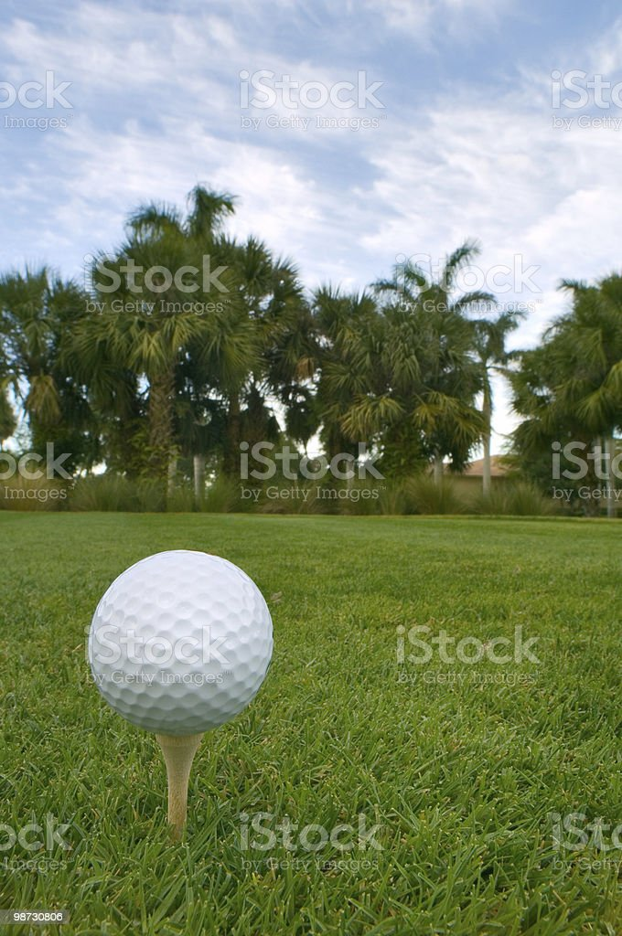 golf ball on tee with palms and patchy blue sky royalty-free stock photo
