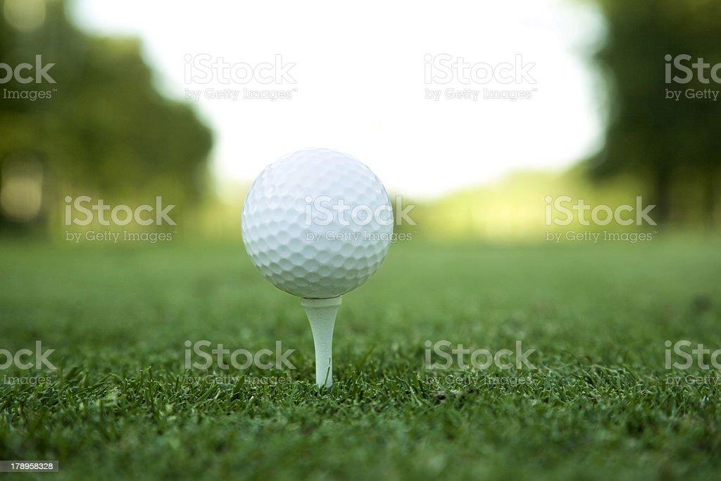 Golf ball on tee XL stock photo