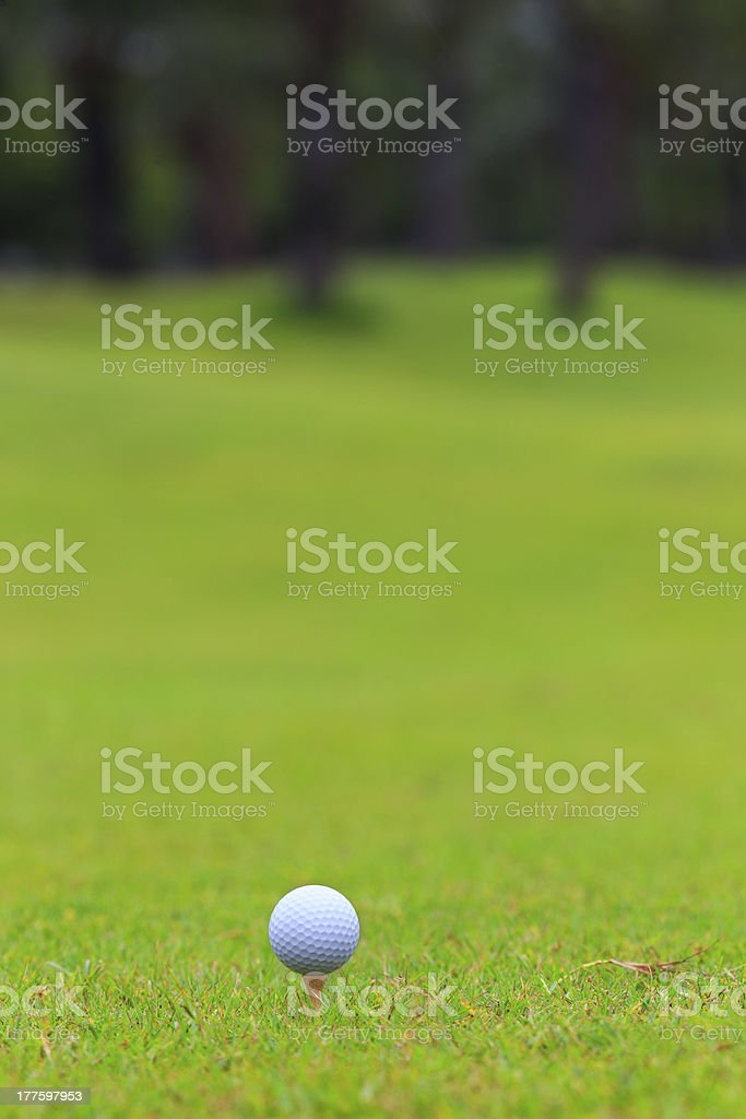 Golf ball on teeing area over a blurred green stock photo