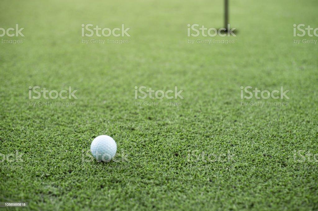 golf ball on the green golf.