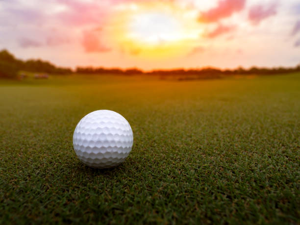 Golf ball on the green grass in beautiful golf course at sunset background, happy golf game stock photo