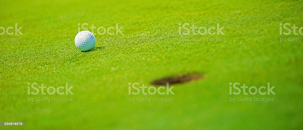 Golf ball on the green, shallow DOF.