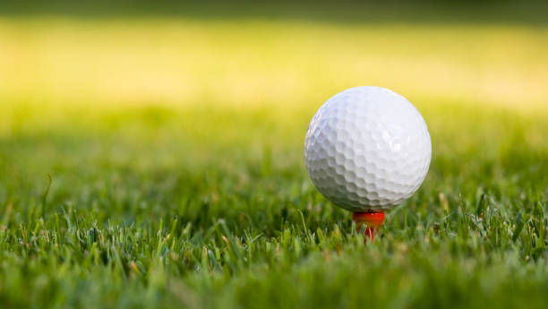 Golf ball on the tee  golf ball stock pictures, royalty-free photos & images