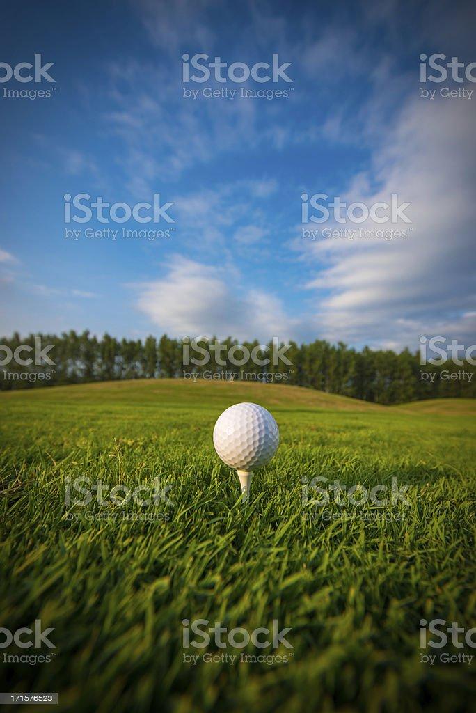 Golf ball on the tee stock photo