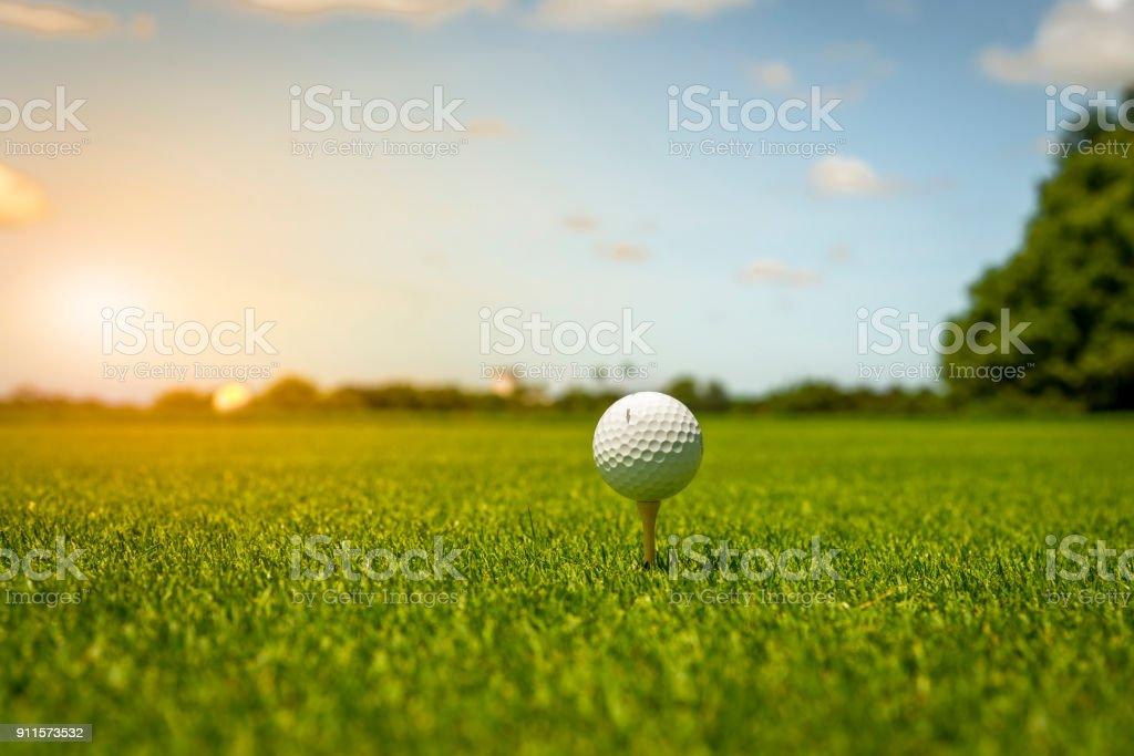 A golf ball put on tee at golf course