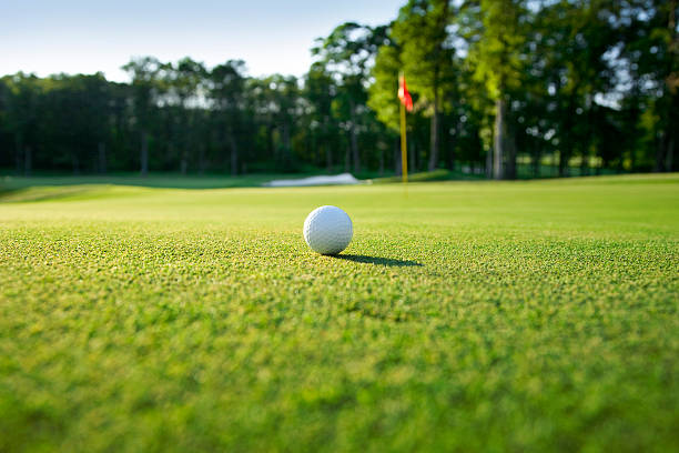 Golf ball sitting on a green with the flagstick nearby Golf ball on green selective focusOthers you may like: golf ball stock pictures, royalty-free photos & images