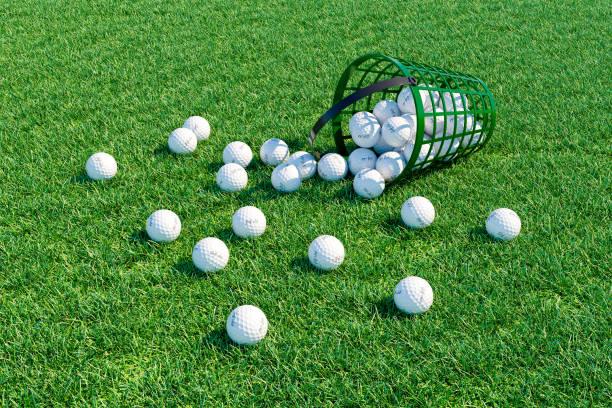 Golfbälle verstreut Feld in der Nähe von Korb. – Foto
