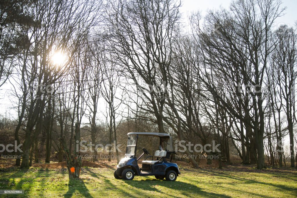 A golf cart on a green surrounded by trees. stock photo