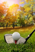 Golf club and ball in grass in forest in autumn