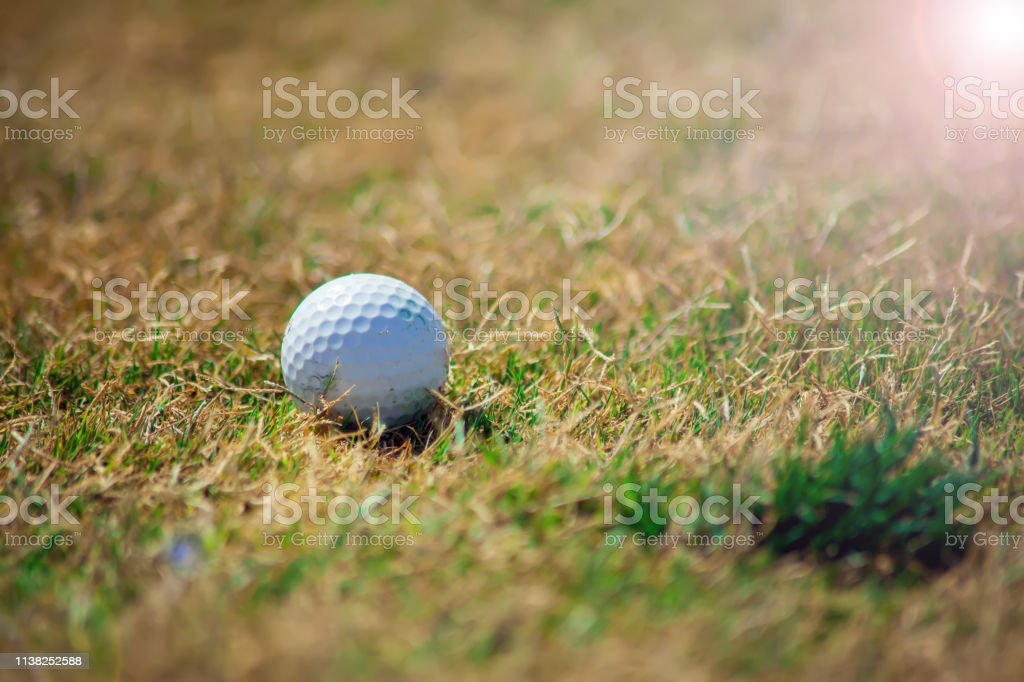 Golf club and ball on the green course. Close up. Top view. Sport,...