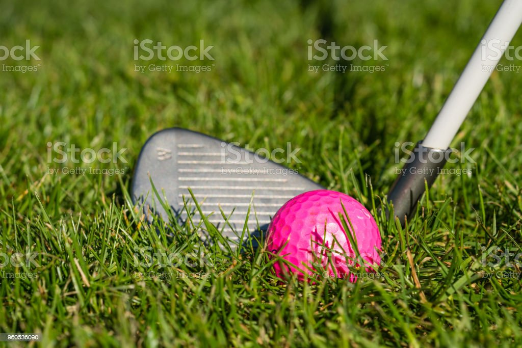A pink golf ball lies on a meadow right before the striking with an...