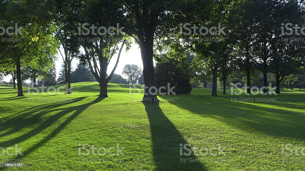 Golf course in late afternoon royalty-free stock photo
