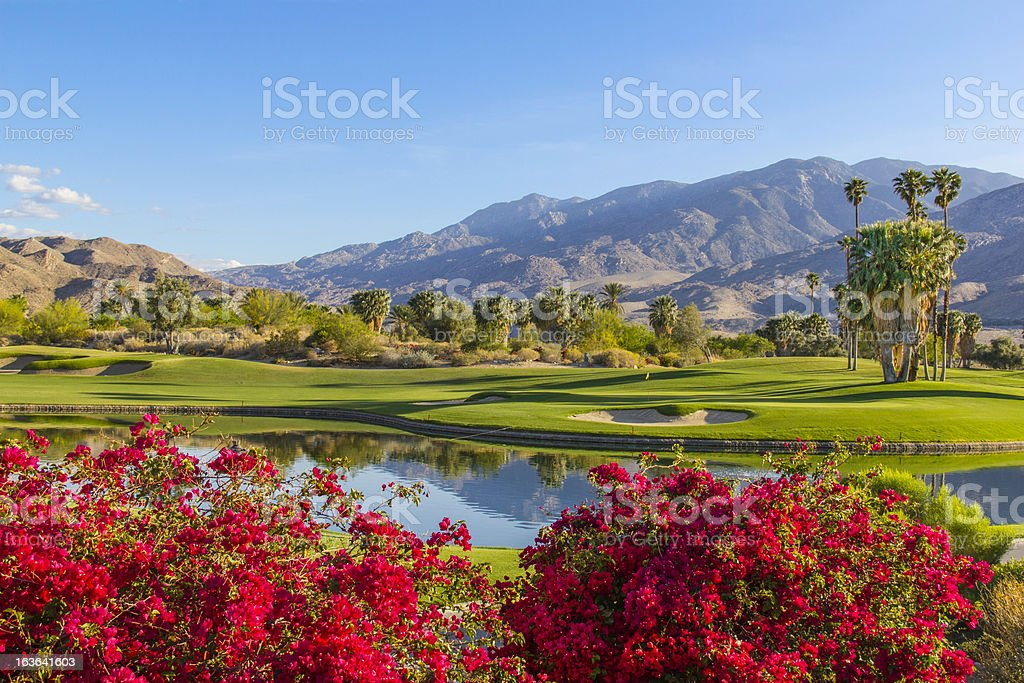 Golf course in Palm Springs, California (P) stock photo