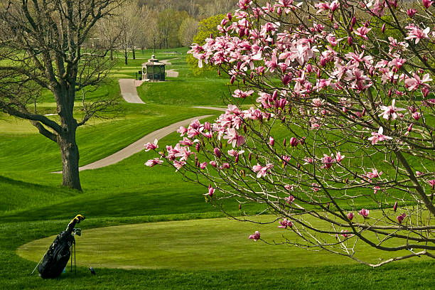 337 Golf Spring Golf Course Flower Stock Photos, Pictures & Royalty-Free  Images - iStock