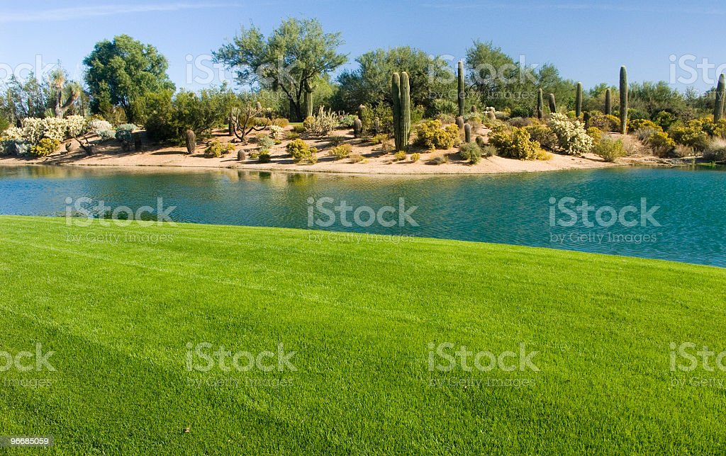 Golf Course In The Desert royalty-free stock photo