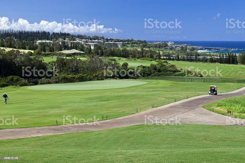 Golf Course Landscape stock photo