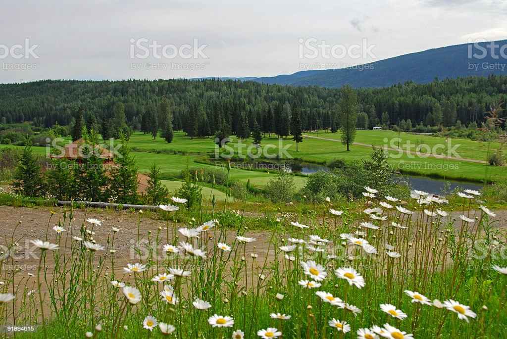 Golf course near the pond royalty-free stock photo