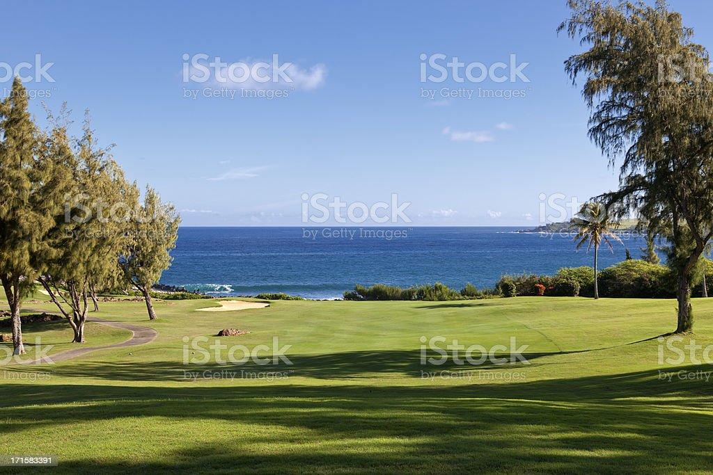 Golf Course Ocean View stock photo