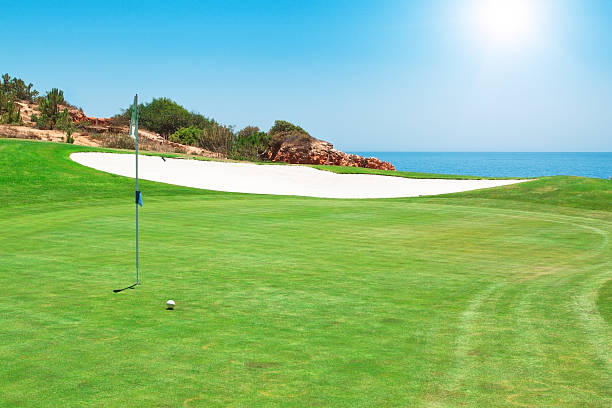 Golf course on the background of sea. Summer. stock photo