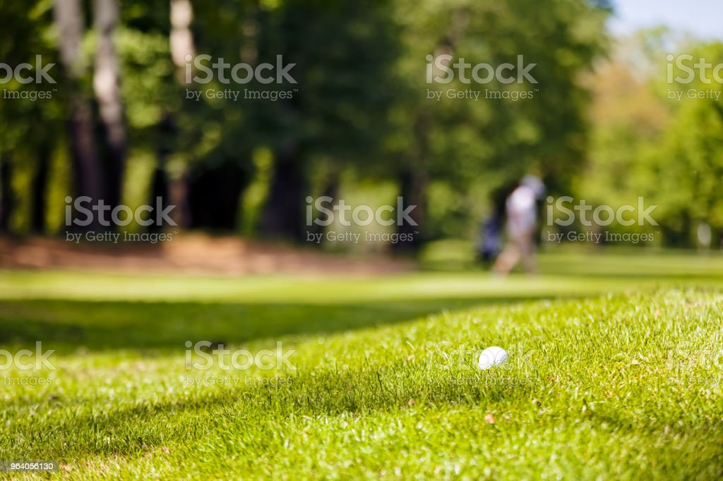 golf course - Royalty-free Agricultural Field Stock Photo