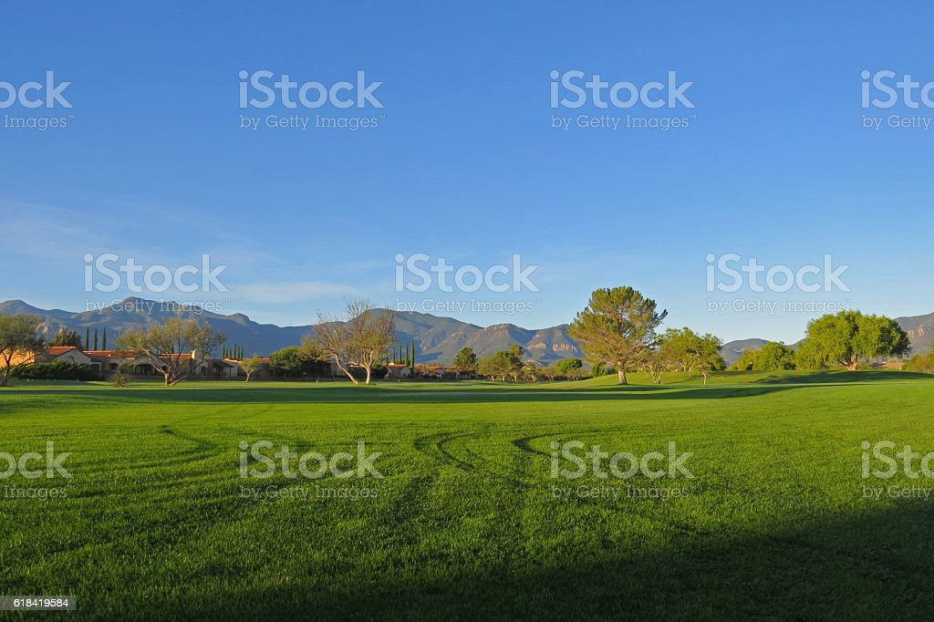 Golf Course Tracks stock photo