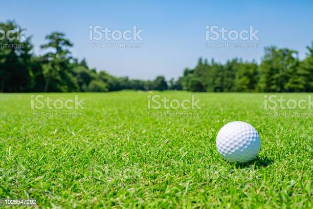 Golf course where the turf is beautiful and golf ball on fairway golf picture id1028547292?b=1&k=6&m=1028547292&s=612x612&h= ithoe hdccf77d4xoodtmcz8bosonksmra61cjw1sw=