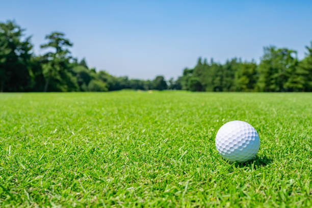 golf course where the turf is beautiful and golf ball on fairway. golf course with a rich green turf beautiful scenery. - golf stock photos and pictures