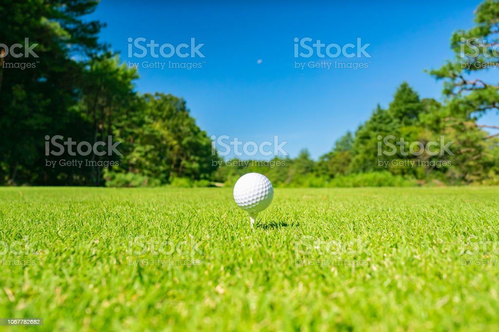 Golf Course where the turf is beautiful and Golf Ball on tee. Golf...
