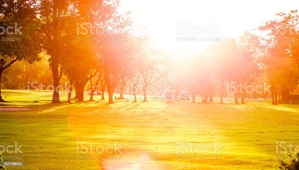 Golf course with golf cars under evening  sunny light. stock photo