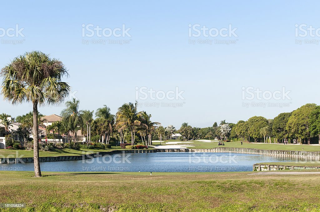 golf course with palm tree in Florida royalty-free stock photo