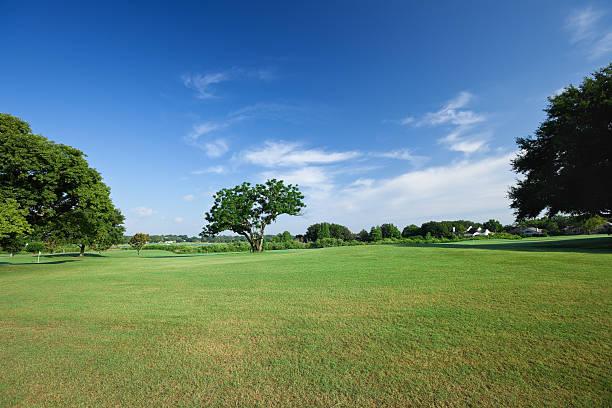 Golf Fields stock photo