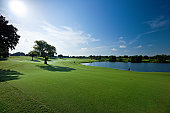 Golf fields and beautiful summer landscapes.