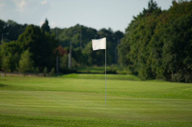 golf flag - tree logo stock photos and pictures