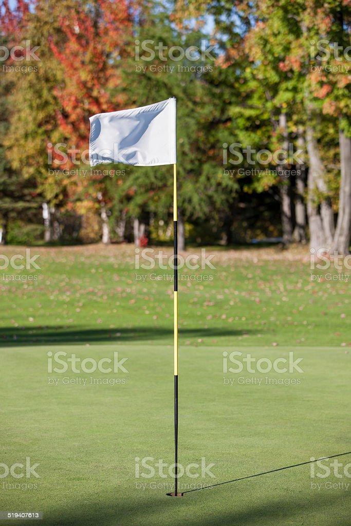 Golf flag. stock photo