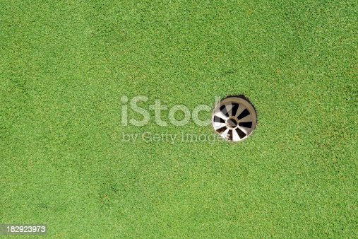 825397576 istock photo Golf Green and Hole - XLarge 182923973