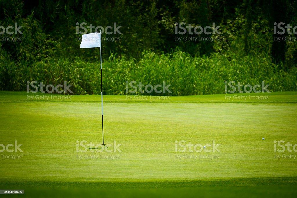 Golf Green Background stock photo