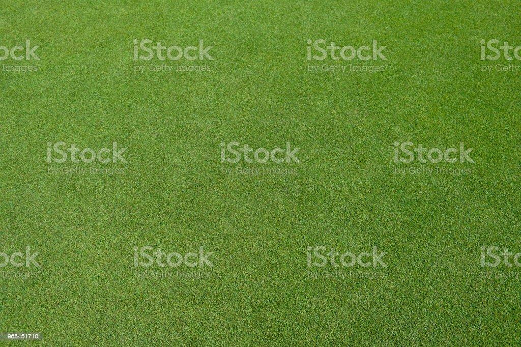 Golf green field zbiór zdjęć royalty-free