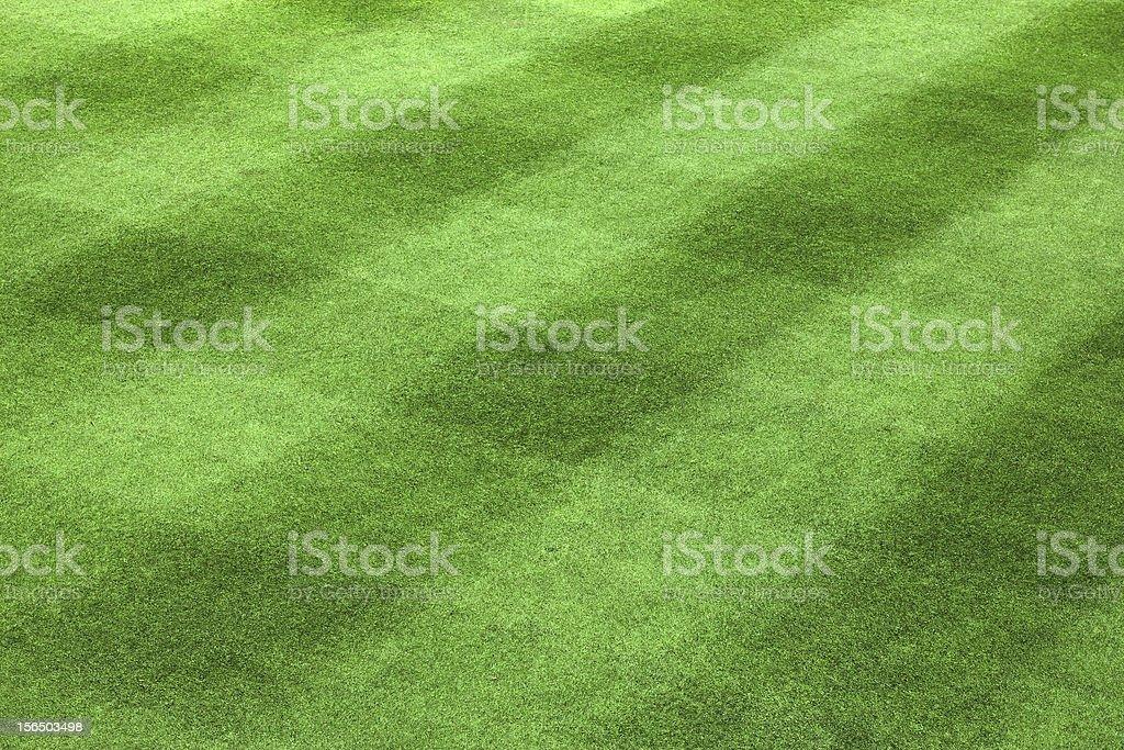 Golf green grass pattern royalty-free stock photo