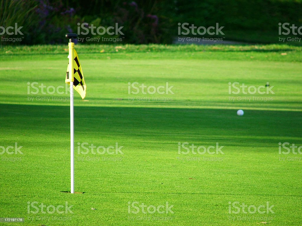 A practice putting green on a golf course. The miniature pin is shot...