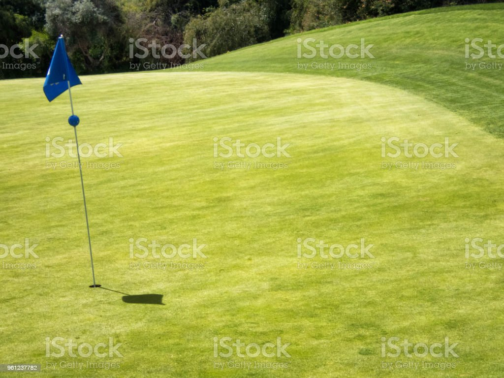 Golf green with the flag in the hole.