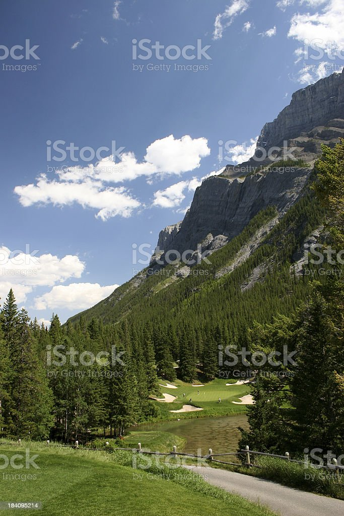 Golf Green Vertical royalty-free stock photo