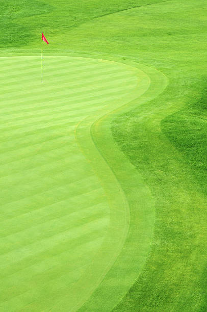 Golf green with grass in several green tones Golf Green green golf course stock pictures, royalty-free photos & images
