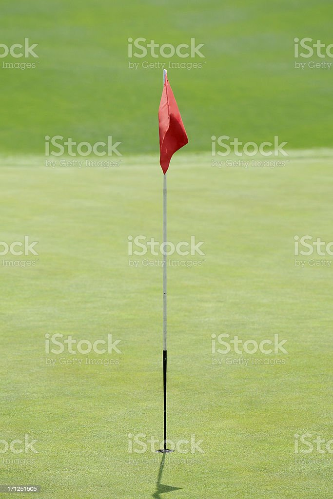 Golf Green - XLarge royalty-free stock photo