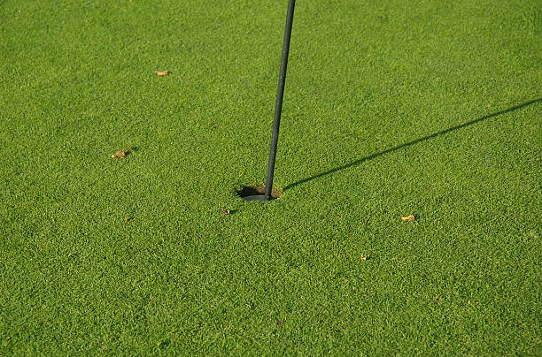 Golf hole 2 stock photo