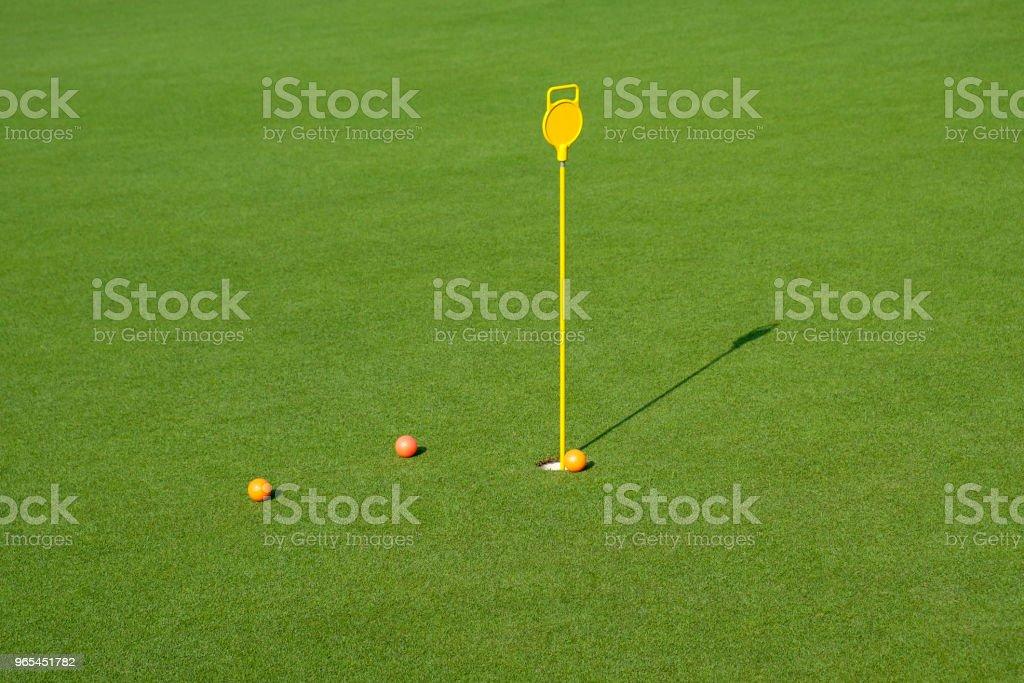 綠地裡的高爾夫球洞 - 免版稅休閒活動 - 主題圖庫照片