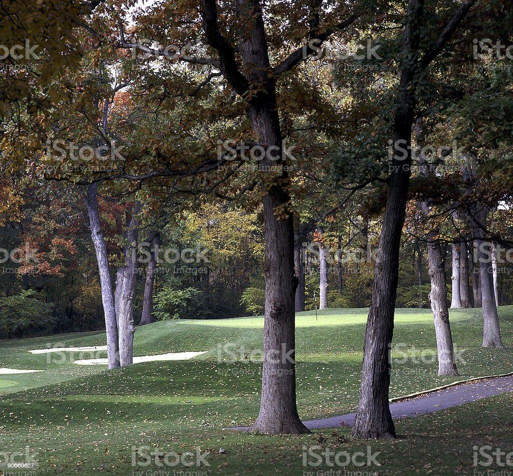 Golf Hole through trees royalty-free stock photo