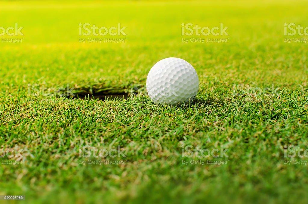 Golf into the hole royaltyfri bildbanksbilder