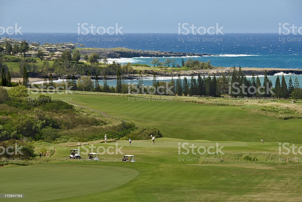 Golf on Maui stock photo